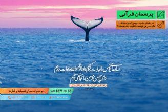 در داستان حضرت یونس (سوره صافات) مگر ماهی می توانست تا قیامت زنده بماند؟