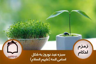 سبزه عید نوروز به شکل اسامی ائمه (علیهم السلام)