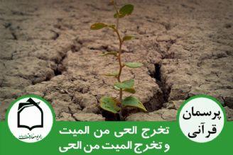 منظور از تعبیر زنده کردن مردگان در قرآن