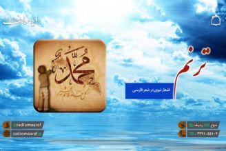 بررسی شاخص های ادبیات تعلیمی در ادبیات فارسی